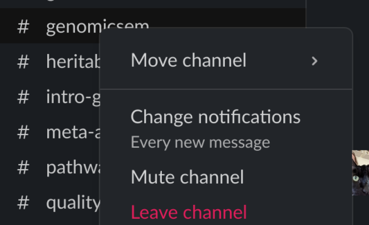 Channel notifications