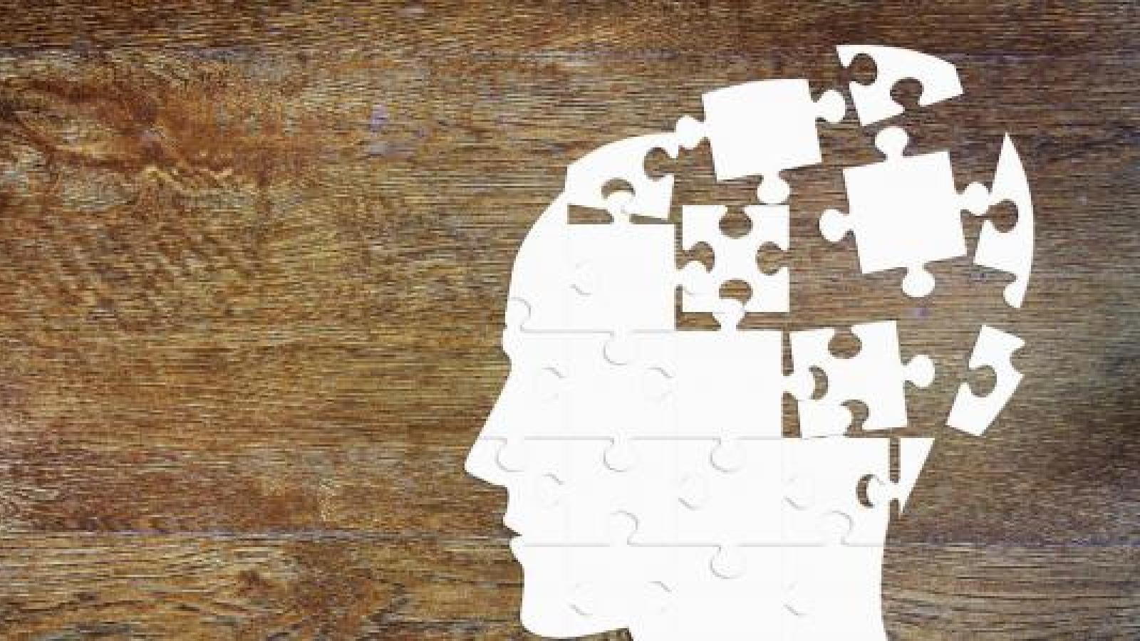 Understanding the teenage brain