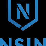 NSIN logo