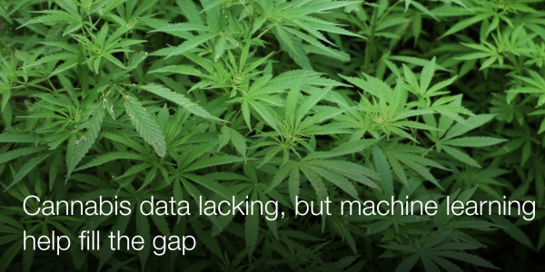 Cannabis data lacking, but machine learning could help fill the gap