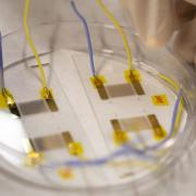 Assistant Professor Xiaoyun Ding in the Biomedical Microfluidics Lab