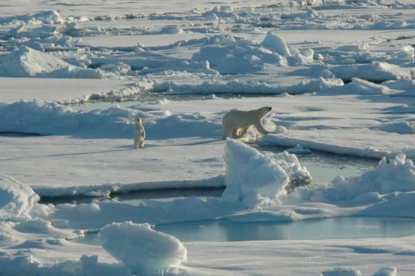 Photo by Kelley Elliott, NOAA