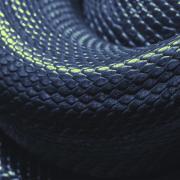Close up snake skin