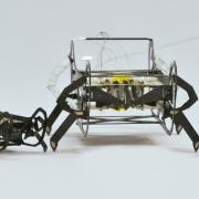 Robots shaped like bugs