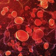 Artist representation of blood cells