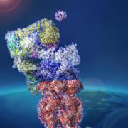 An artist rendering of a cell