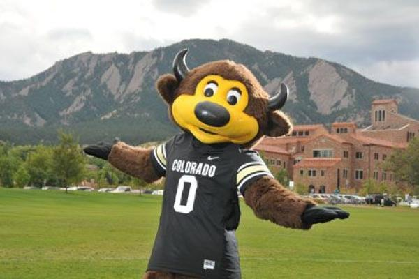 Chip mascot standing on field