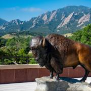 Flatirons in Boulder, CO behind a statue of a buffalo