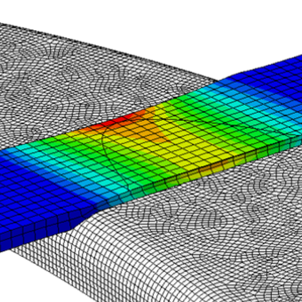 Cross-sectional view of Finite Element Modeling of Arterial Tissue Fusion