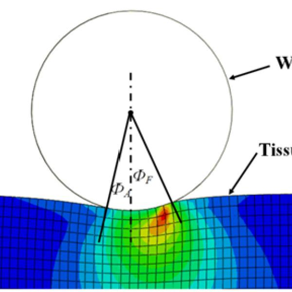 Rolling wheel FEA to study contact mechanics on tissue