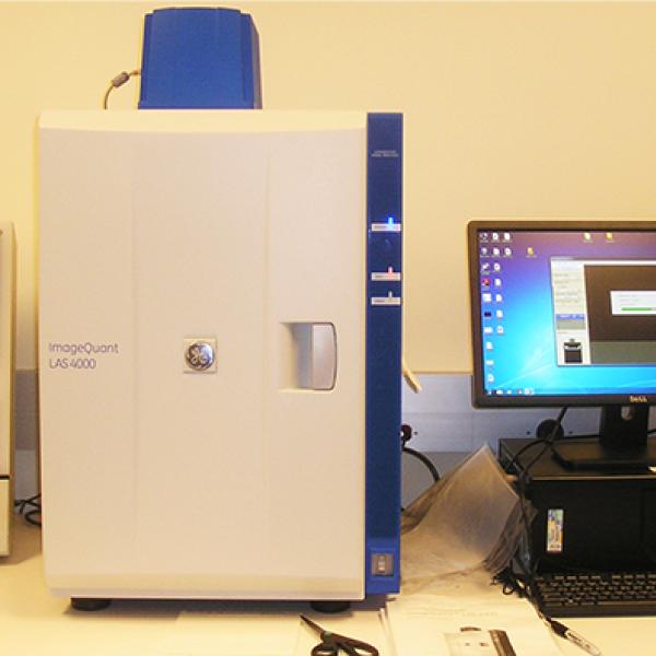 LAS 4000 Imaging System