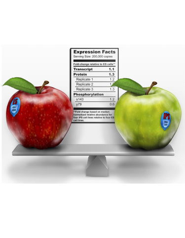 iPS balance illustrated with apples.