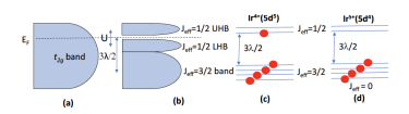 (a) The traditionally anticipated broad t2g band for 5d-electrons; (b) The splitting of the t2g band into Jeff=1/2 and Jeff=3/2 bands due to SOI; (c) Ir4+(5d5) ions provide five 5d-electrons, four of them fill the lower Jeff = 3/2 bands, and one electron partially fills the Jeff = 1/2 band where the Fermi level EF resides; and (d) For Ir5+(5d4) ions, four 5d-electrons fill the Jeff=3/2 bands, leading to a singlet Jeff = 0 state for the strong SOI limit.