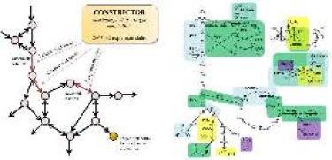Constrictor molecule
