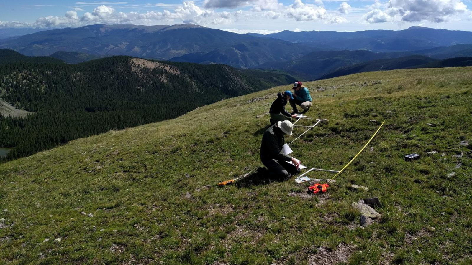 AK fieldwork