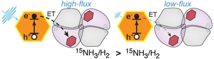 MoFe Catalysis Figure