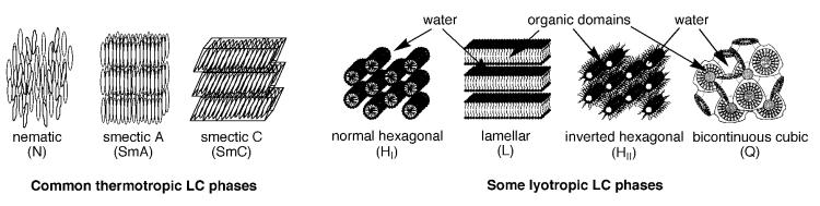 Representation of some LC phases