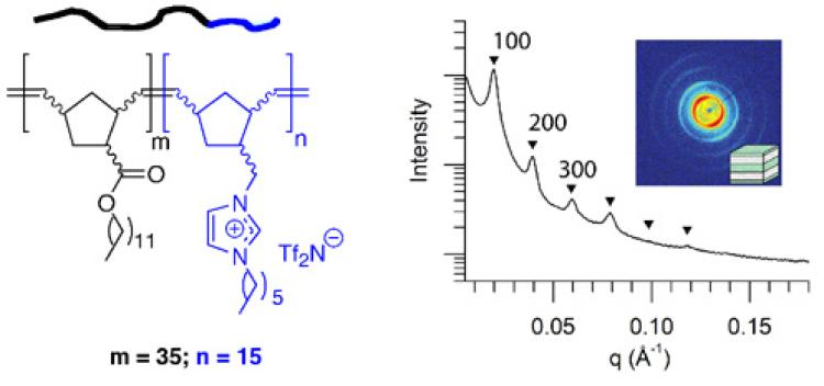 Chemical structure and phase-separated ordered morphology