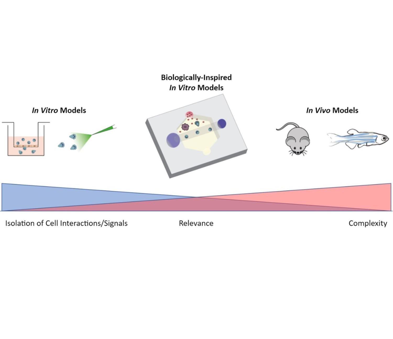 Microfluidic Relevance