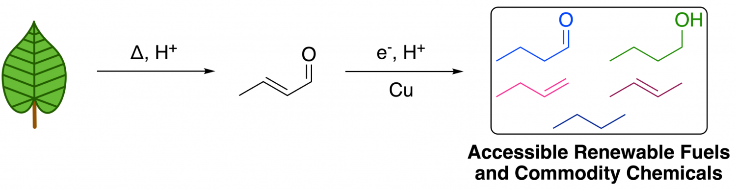 Electrochemical reduction selectivity of crotonaldehyde on copper
