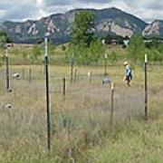 field site in boulder colorado, flatiron mountains in the background