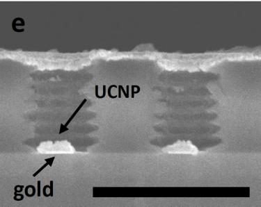 MIM-UCNP cross section
