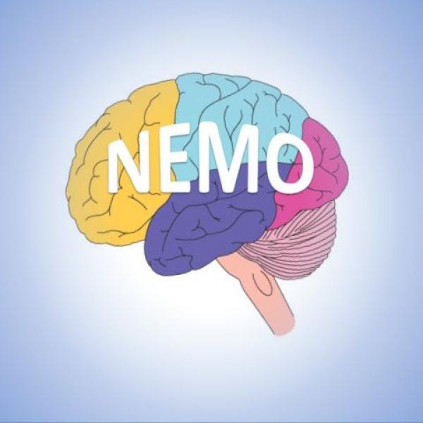 NeMo study logo