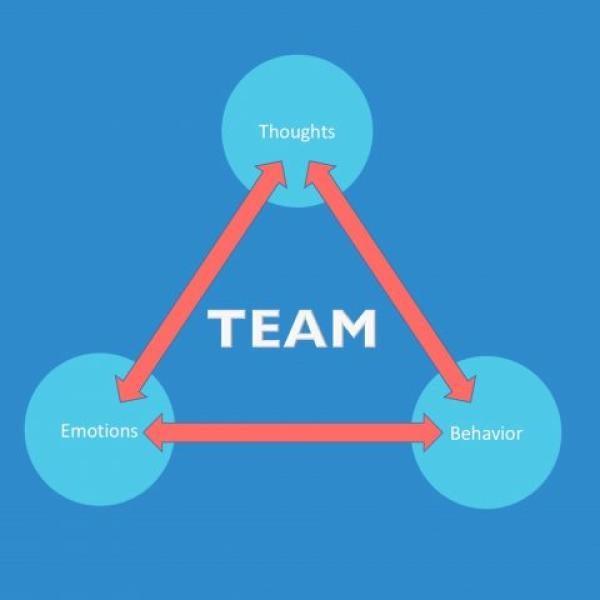 TEAM study logo