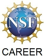 NSF Career logo