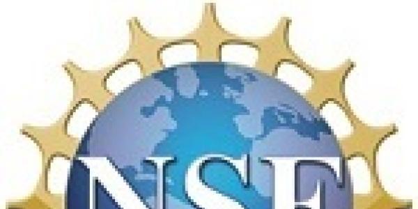 the NSF career logo