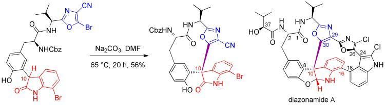 Diazoamide