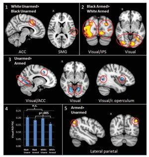 fmri brain regions