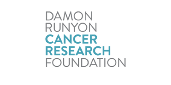 https://www.damonrunyon.org/news/entries/6071/Damon%20Runyon%20Cancer%20Research%20Foundation%20Awards%20%242.65M%20to%20Innovative%20Early%20Career%20Scientists
