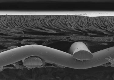 Thin-film composite membrane cross section