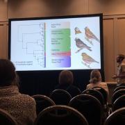 Erik presenting at the 2019 Evolution conference
