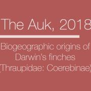 The Auk 2018 Biogeographic origins of Darwin's finches (Thraupidae: Coerebinae)