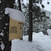 Chickadee Nest Box in the Snow
