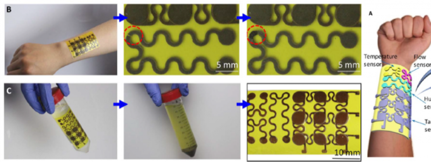 Rehealable, Recyclable, and Malleable Electronic Skin