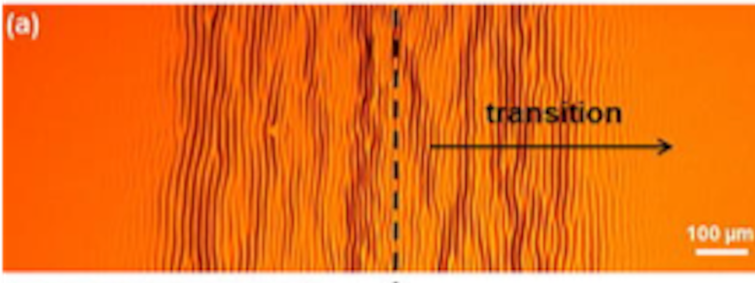 Thin Films on Shape Memory Polymers