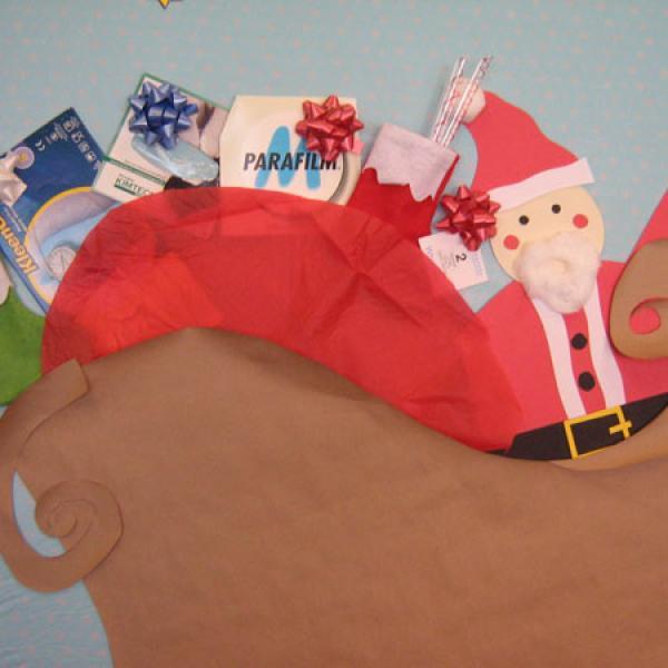 2010 Christmas: Award Winning Door Decoration