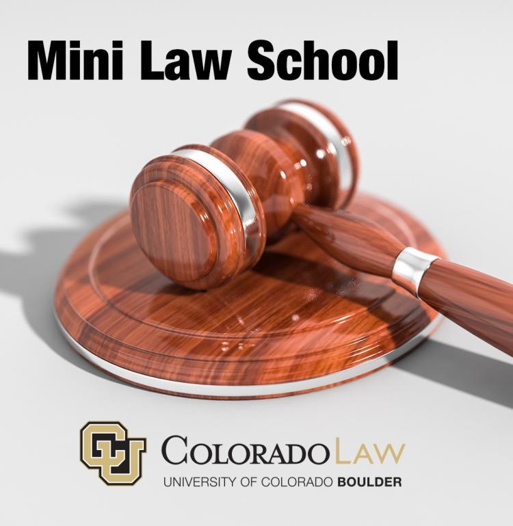 Mini Law School