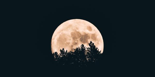 The moon on the horizon