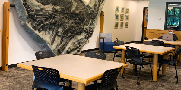 Study spaces in the Earth Sciences & Map Library