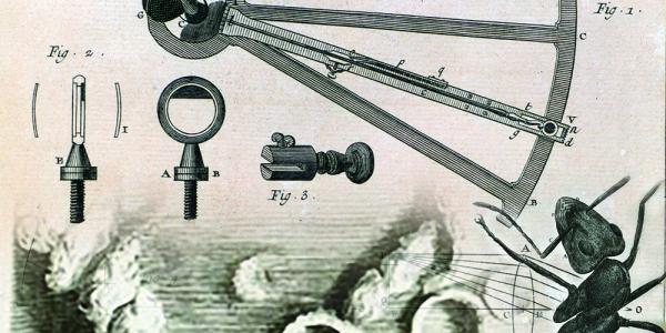 Tracing Scientific Vision