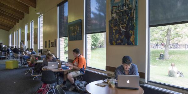 image of students studying alone and in groups at tables along the windows in Norlin Commons