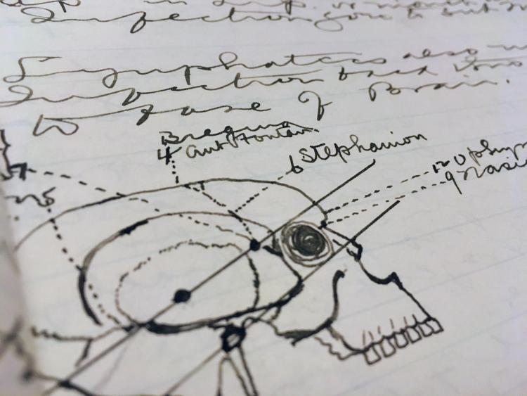 Dr William Page Harlow's lecture notes during med school (1896-1899).