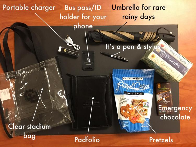 An overview of the swag bag of gifts