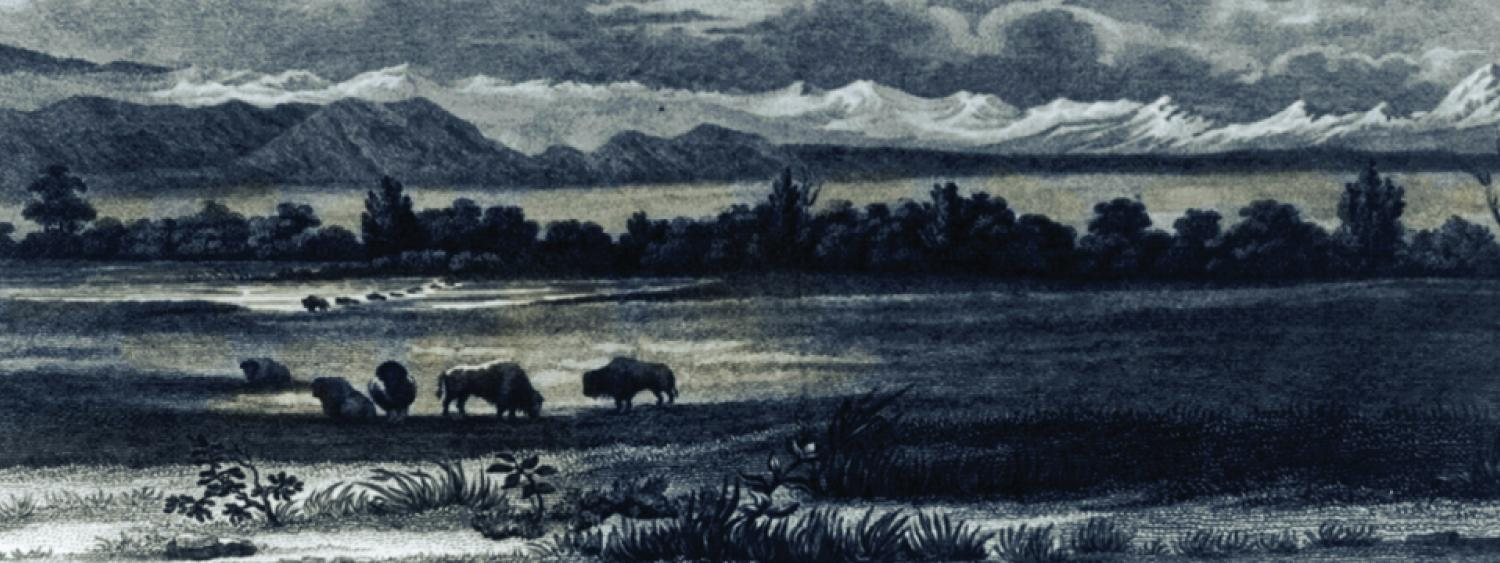 Early illustration from the Century of Views of Colorado exhibit