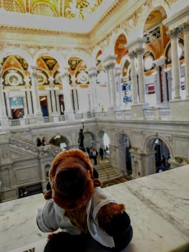 Ralphie takes on the Library of Congress.