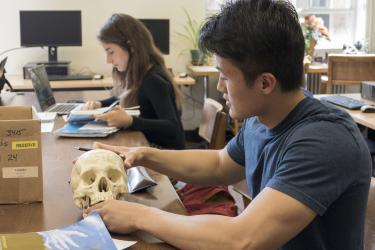 Student studying a scull